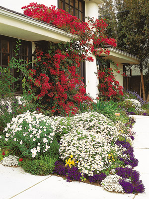 Red, White and Blue Flowers Covering Front Porch