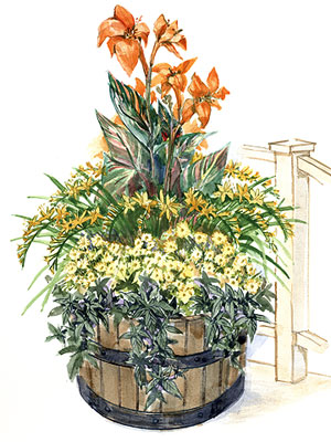 Tropical Container