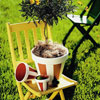 Easy DIY Garden Accents