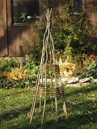 Willow tuteur plant support