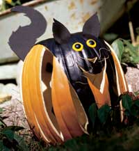 cat pumpkin 2