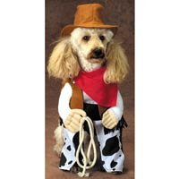 Dog In Rodeo Costume