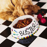 decorated doggie bowl