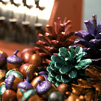 Colored Pine Cones and Acorns