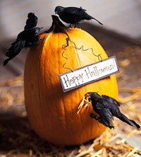 Pumpkin Decorated with Crows