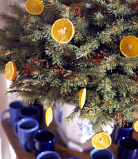 Detail: Miniature Tree with Oranges