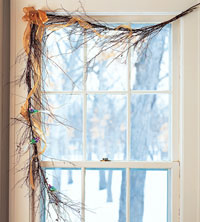 Twigs Over Windows