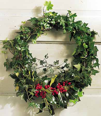 Holly-and-Ivy Wreath