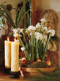 Paperwhites and candles