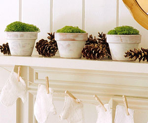 green moss filled pots on white mantel