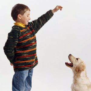 Boy wearing raglan sweater feeding dog