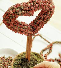 Dried Rose Topiary Project