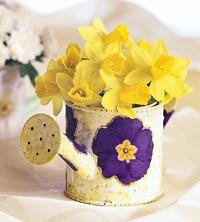 watering can with yellow daffodils
