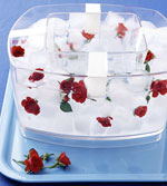Ice Cubes with Red Flower