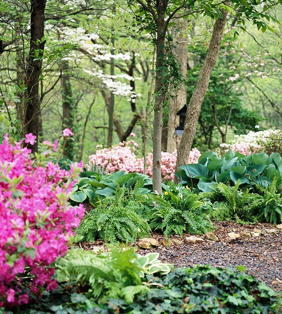 Floral garden in wooded backyard