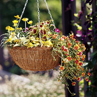 coco fiber flower hanging basket filled with flowers