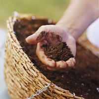 adding soil to flower basket