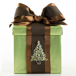 Green gift box with brown ribbon