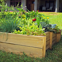 Above Ground Vegetable Bed