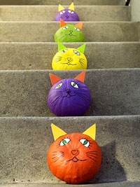 colorful cat face drawings on pumpkin