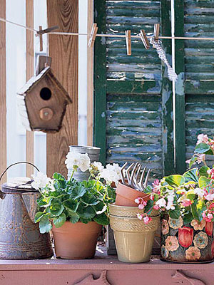 plants with one birdhouse