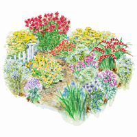 Hot-Color, Heat-Resistant Garden Plan Illustration
