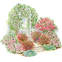 Rose-Covered Arbor Garden Plan Illustration