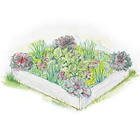 Small-Space Vegetable Garden Plan Illustration