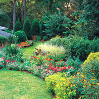 Hot-Summer Garden Plan
