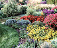 Fabulous Fall-Garden Plan