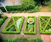 Formal Knot-Garden Plan