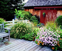 Fall Deckside Garden Plan