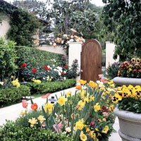 Small-Space Spring Show Garden Plan