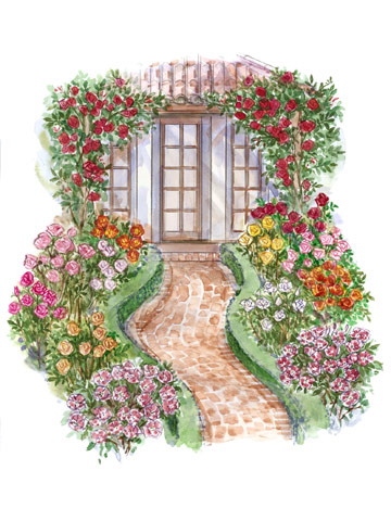 Rose garden layout vip for Rose garden design