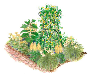 Yellow-Theme Garden Plan Illustration