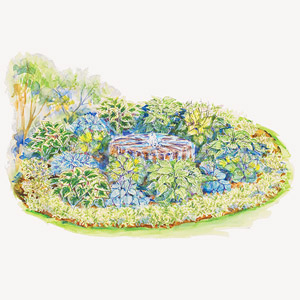 Hosta-Filled Shade Garden Illustration