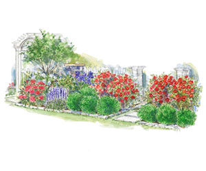 Colorful Front Entry Garden Plan Illustration