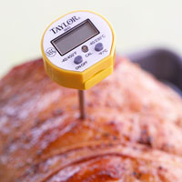 Using a meat thermometer