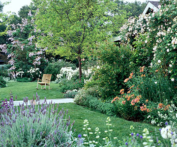 Front Yard Garden with Chair