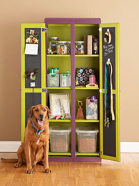dog sitting in front of lime green cabinet