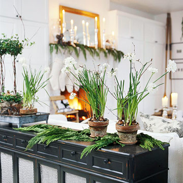 sofa table with topiaries