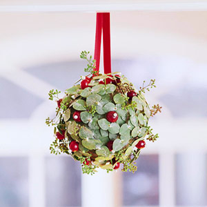 Cranberry & leaf round ornament hanging