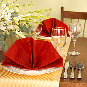 Table setting with elegant fan folded napkin