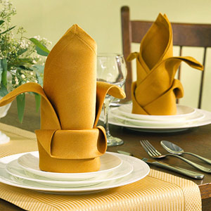 Table setting with bishop's hat folded napkin