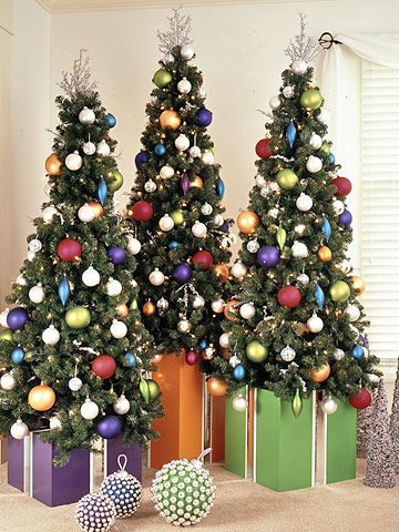 Trees in gift boxes
