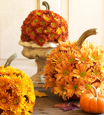 Thanksgiving table decorations of pumkins covered in yellow and orange button mums