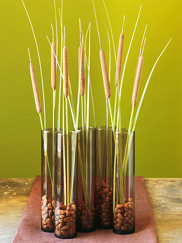Cattails anchored with almonds in tall brown vases
