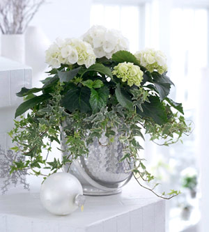 White flowers in silver urn