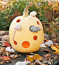 mice with pumpkin