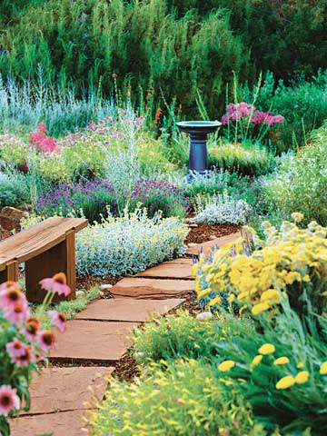perennials for your garden